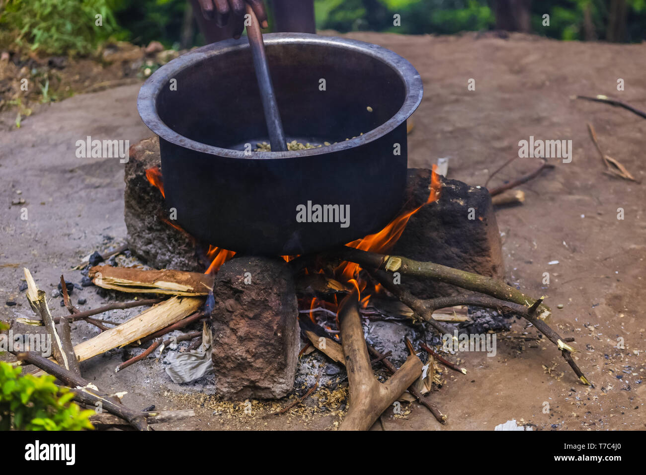 Hot red flame of the bonfire, smoldering firewood, nature around. Fresh mountain air in a village. Tasty smoke with roasted coffee aroma. Stock Photo