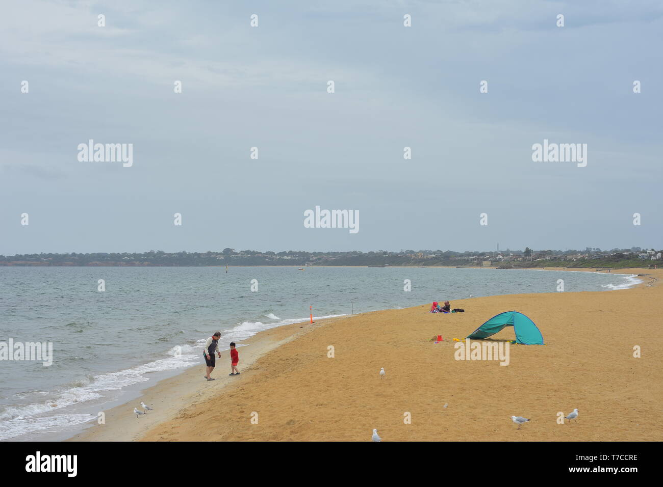 Lonely family playing on sandy beach next to beach tent on overcast day. - Stock Image