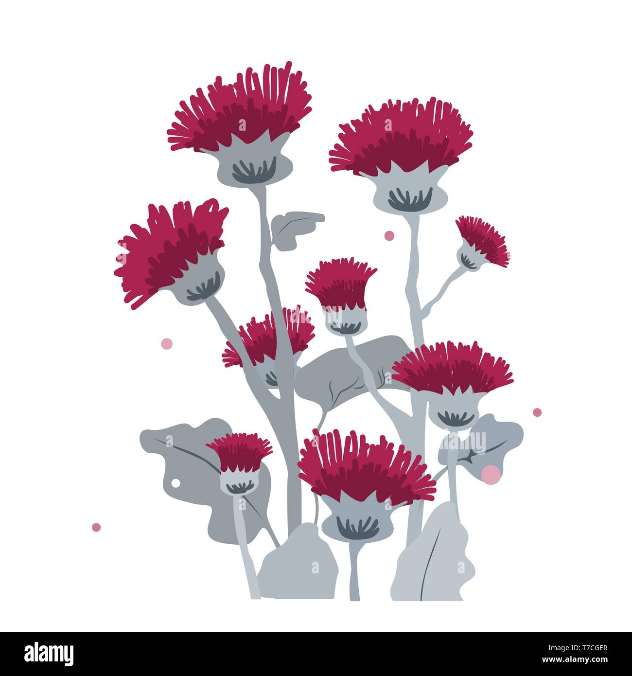 Thistle or burdock flowers. Cartoon thistle isolated on white, vector illustration - Stock Image
