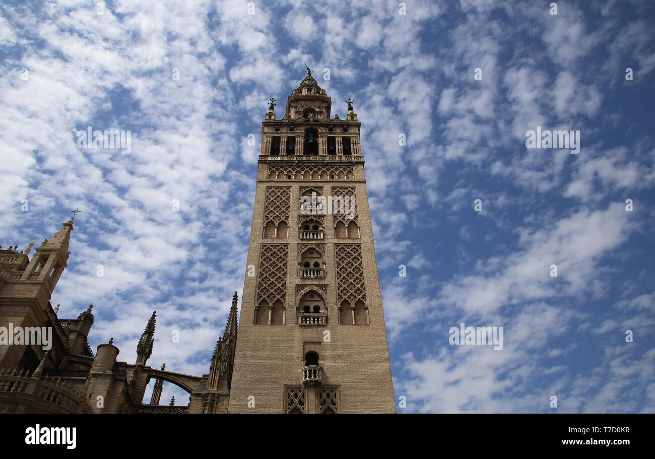 Spain. Andalusia. Seville. The Giralda Tower, ancient minaret of Great Mosque. Almohad style. 12th century. Seville Cathedral. - Stock Image