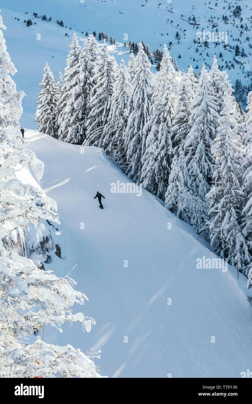 La Clusaz (eastern France): landscape on the upper ski runs with a snowboarder, alone - Stock Image
