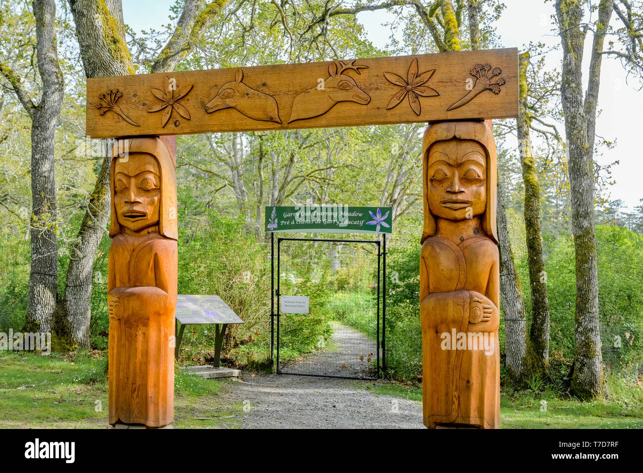 First Nations carved Cedar Portal to restored Garry Oak