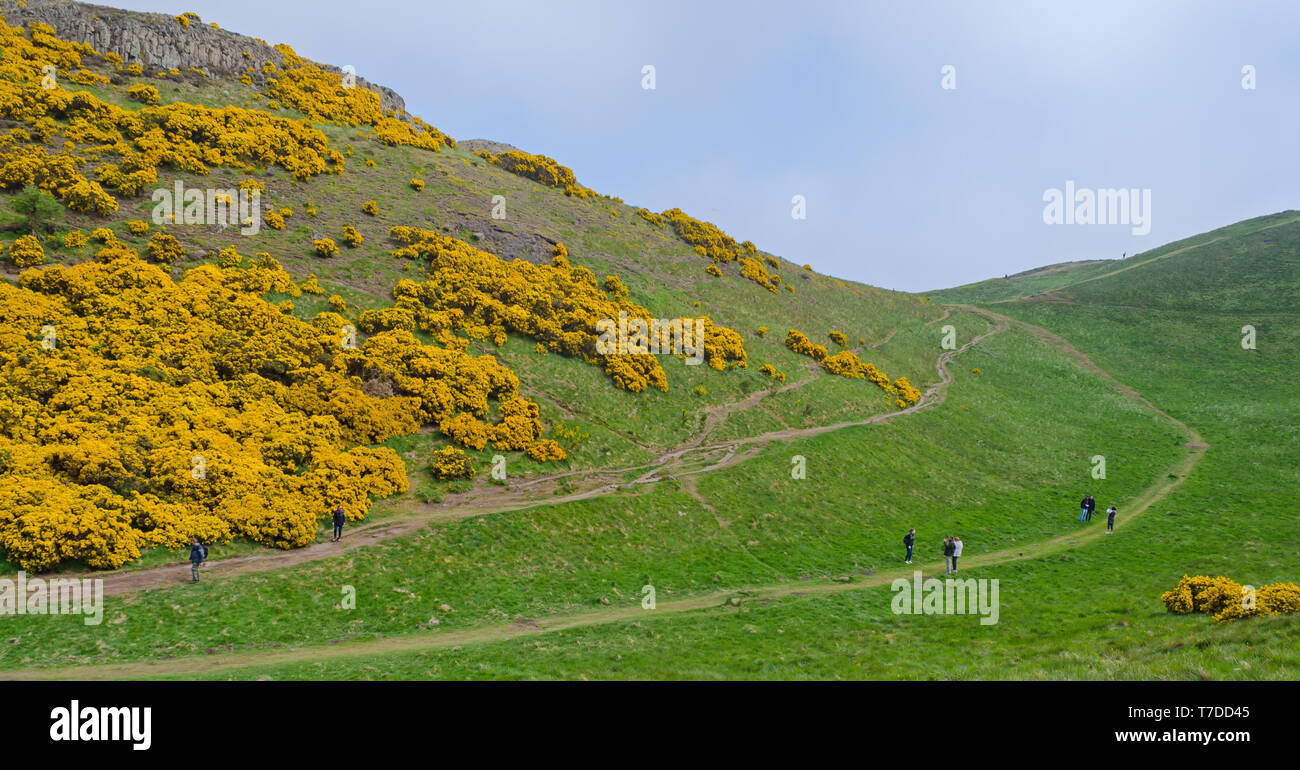 Hikers / Hill Walkers on the paths at Holyrood Park, Edinburgh - Stock Image