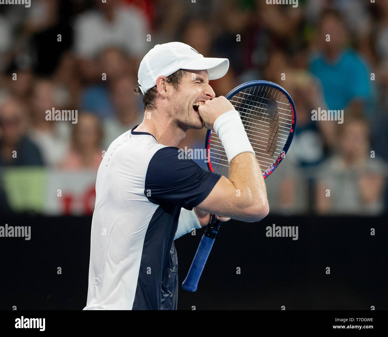 British tennis player Andy Murray reacting after losing point during Australian Open 2019 tennis tournament, Melbourne Park, Melbourne, Victoria, Aust - Stock Image