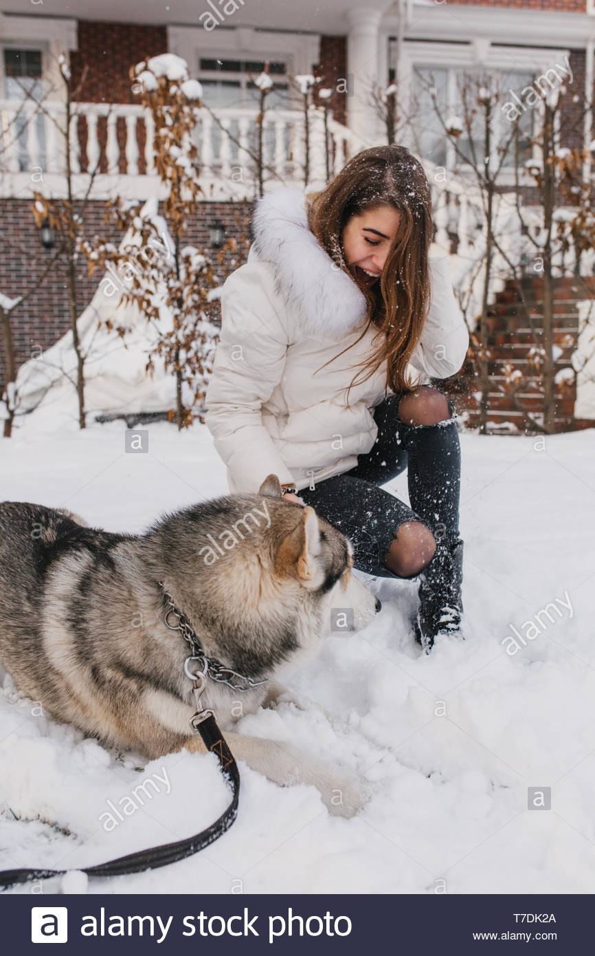 Happy playful time of excited joyful young woman having fun with husky dog on the street in snow.  Happy winter time with home pets outside, smiling, expressing true positive emotions - Stock Image