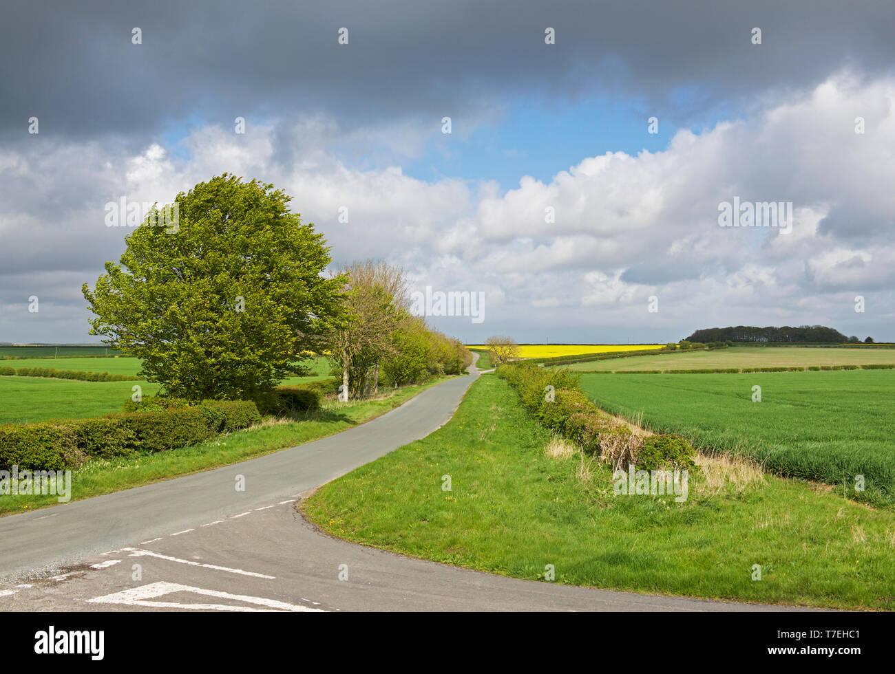 Road junction, and road sign, in the Yorkshire Wolds, near Huggate, East Yorkshire, England UK - Stock Image