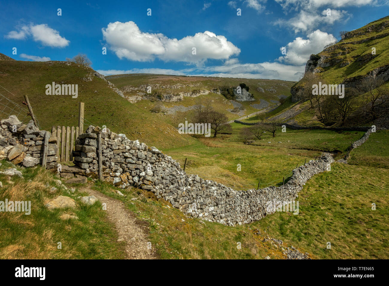 Views over a limestone wall and stile into Trollerdale from the path to Troller's Gill near Appletreewick, Yorkshire Dales Stock Photo