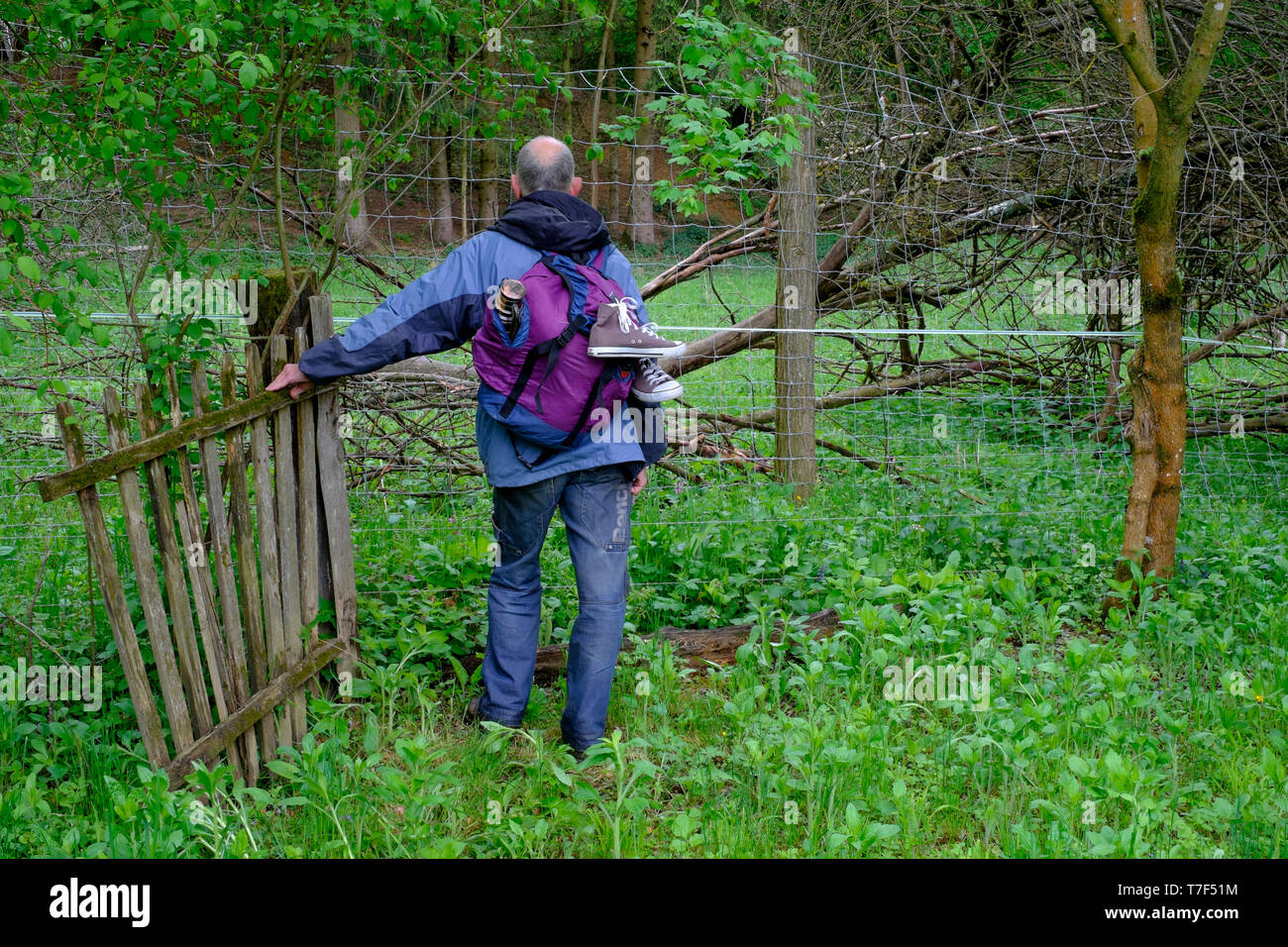 older man backpacking in countryside standing by old wooden gate and confronted by anti deer and electric fences blocking his way zala county hungary Stock Photo