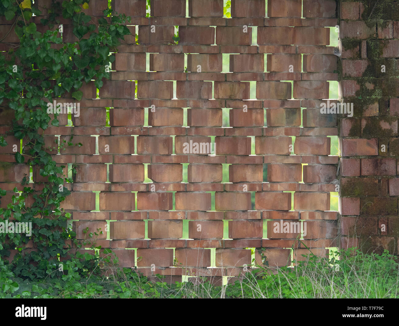 wall made with  bricks arranged diagonally to create vent holes - Stock Image