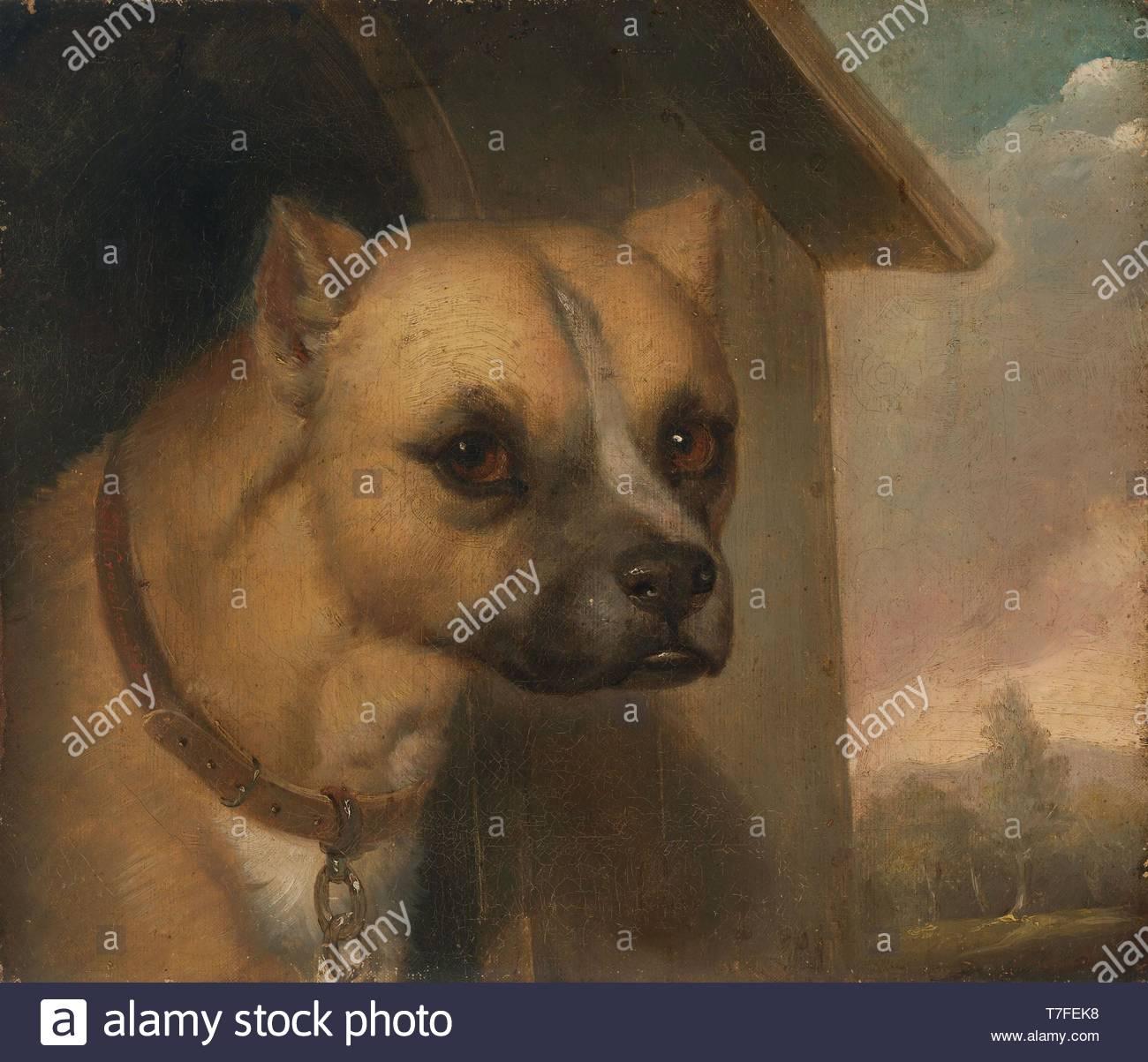 J.M.-Crossland-Staffordshire bull terrier belonging to the Rev. John Gower - Stock Image