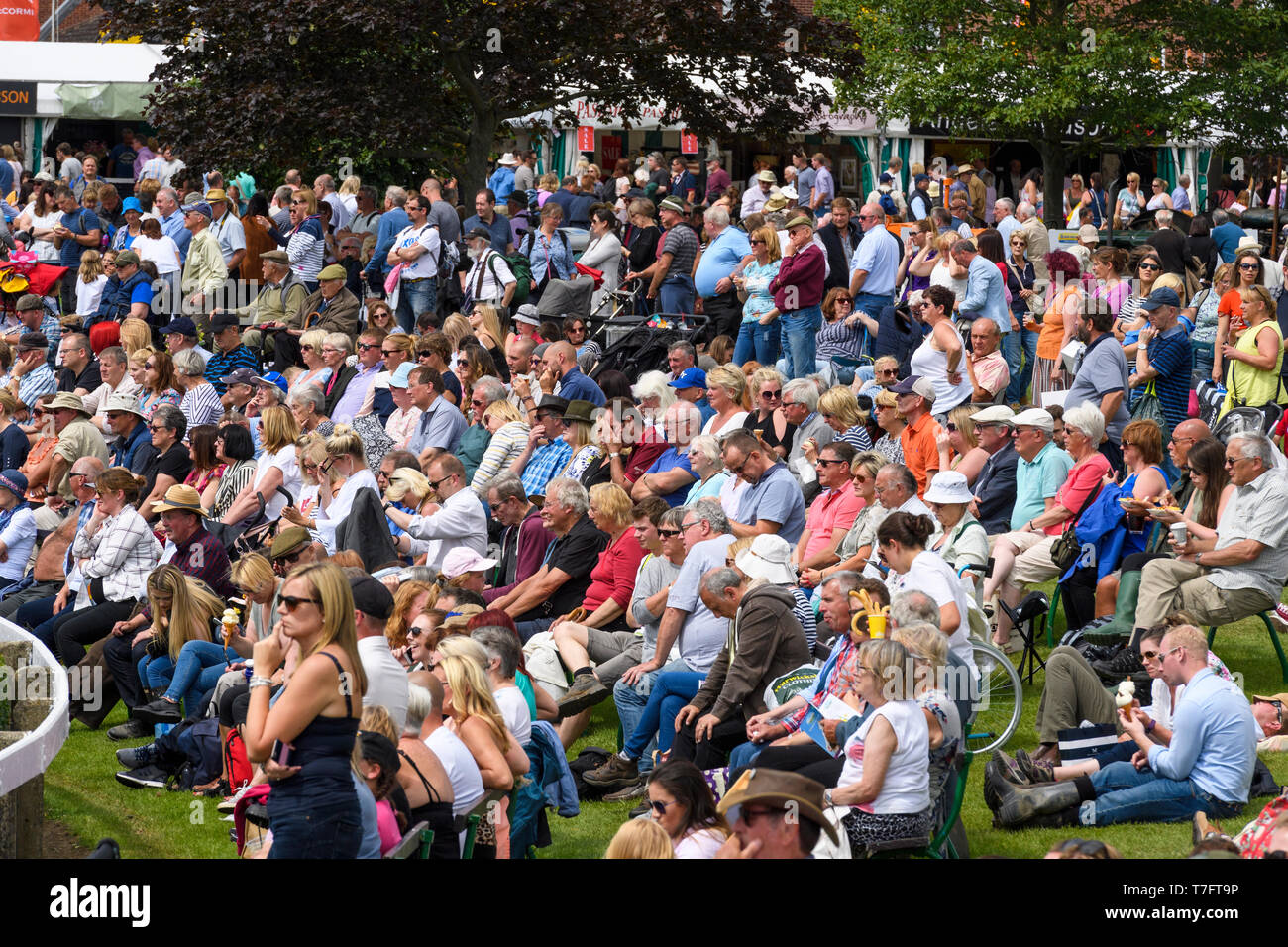 Large crowd of people spectating, gathered around main arena relaxing, sitting in sun, watching event - Great Yorkshire Show, Harrogate, England, UK. - Stock Image