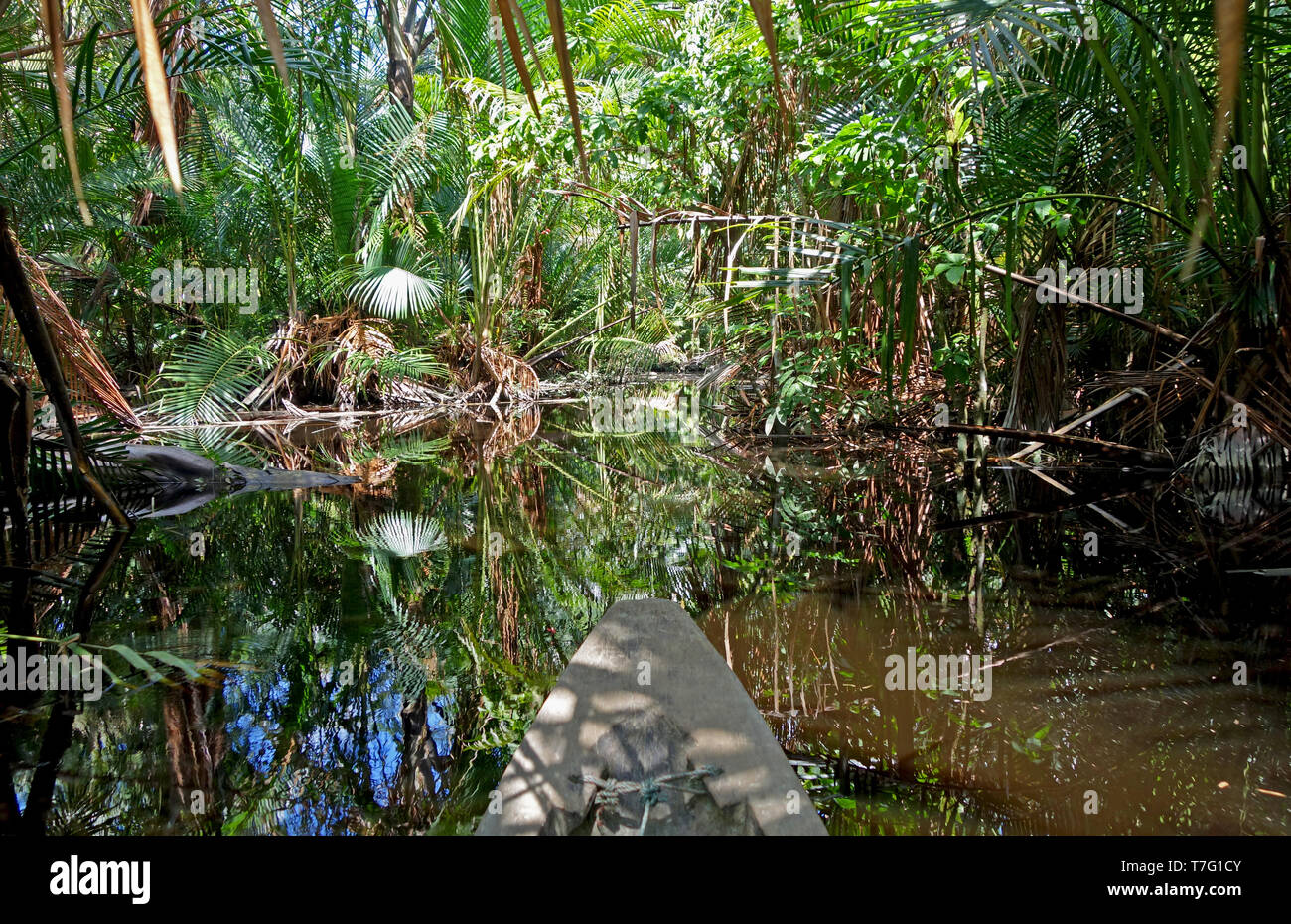 Landscape of Mentawai the island of Sumatra in Indonesia. - Stock Image