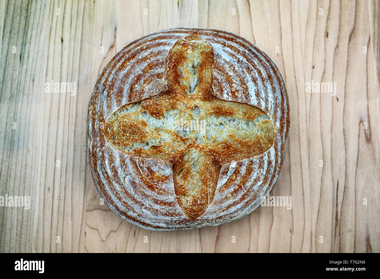 Artisan crusty loaf of freshly baked sourdough bread focaccia boule. traditional Homemade sourdough Boule bread with crust on a wooden board Stock Photo