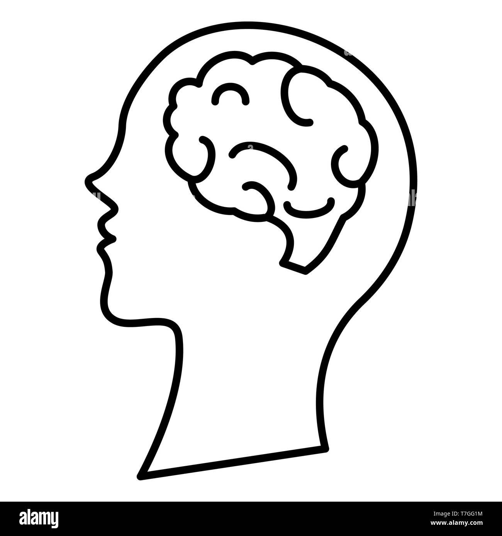 Brain Icon, Vector Illustration, Education Outline - Stock Image