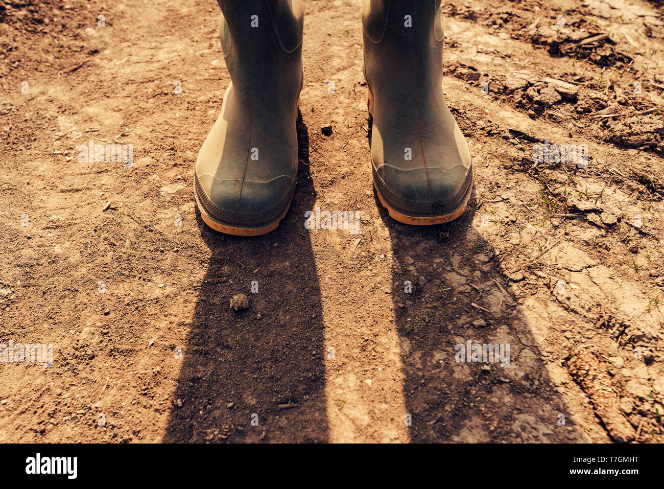 Farmer standing on dirt country road, close up of rubber wellington boots Stock Photo