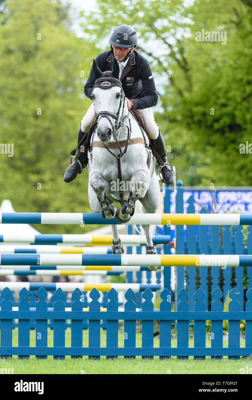 Andrew Nicholson and SWALLOW SPRINGS during the showjumping phase, Mitsubishi Motors Badminton Horse Trials, Gloucestershire, 2019 - Stock Image