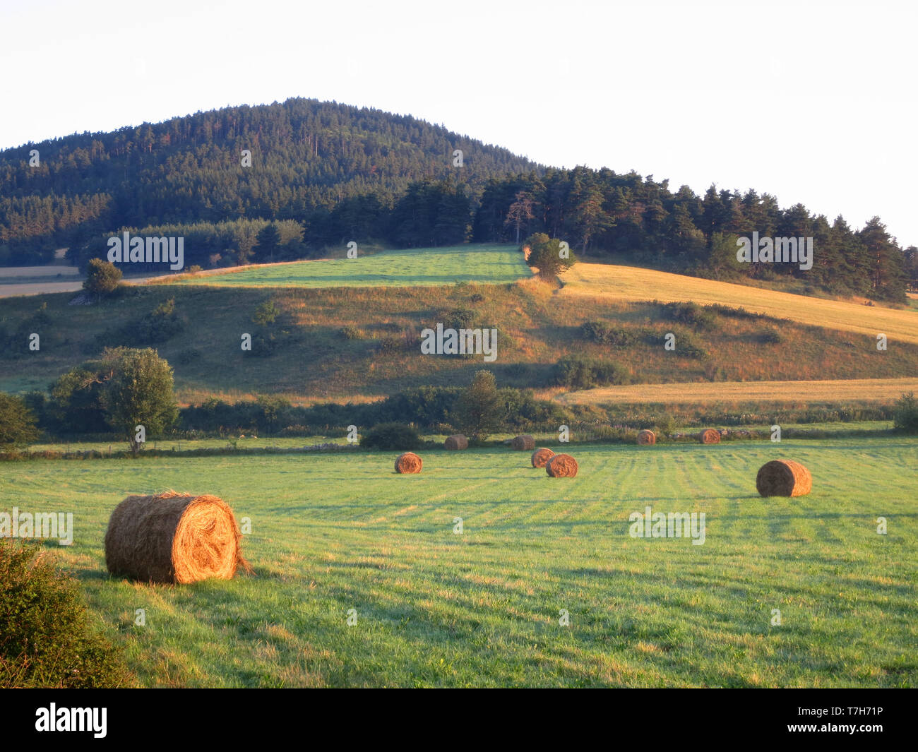 Agricultural fields along the GR 65, Via Podiensis, also know as Le Puy Route, in southern France. French part of the Camino de Santiago. - Stock Image
