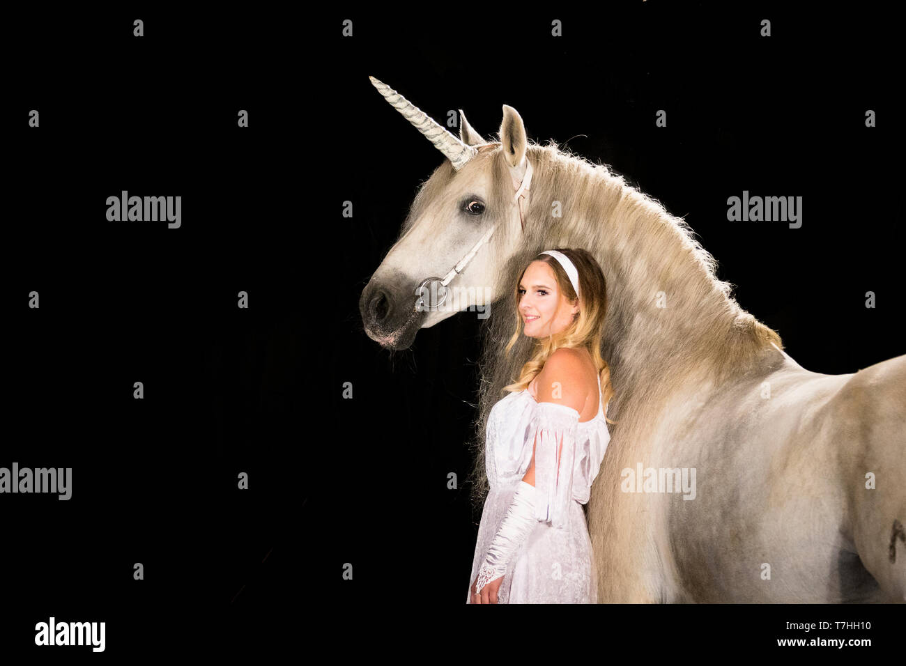 Young woman (fairy, virgin) standing next to unicorn (Pure Spanish Horse with attached horn). Germany - Stock Image