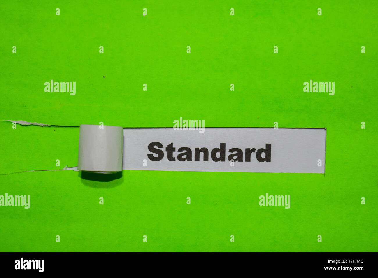 Standard, Inspiration and business concept on green torn paper - Stock Image