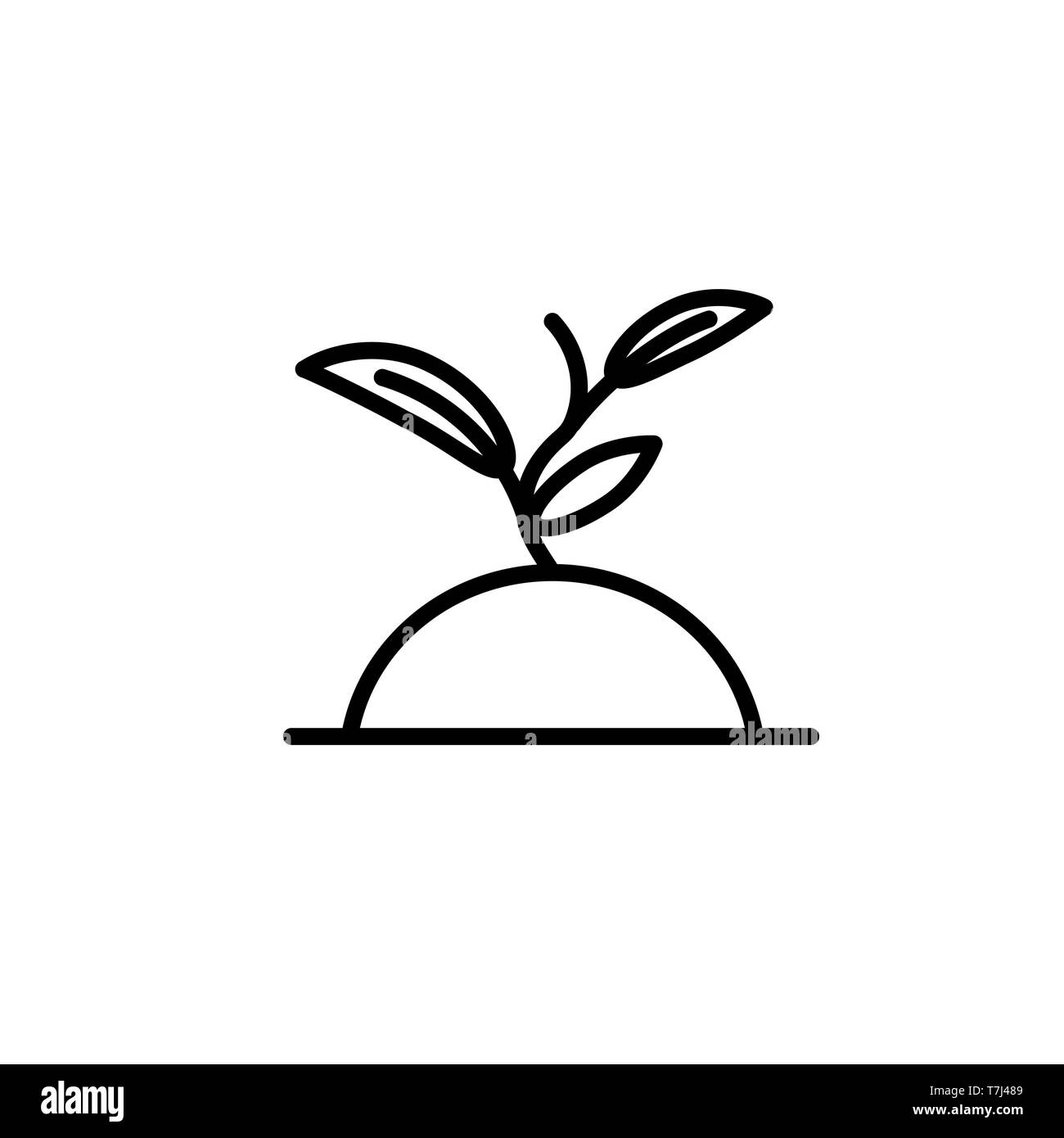 Sprout line icon isolated on white background. Outline thin simple seedling vector. - Stock Vector