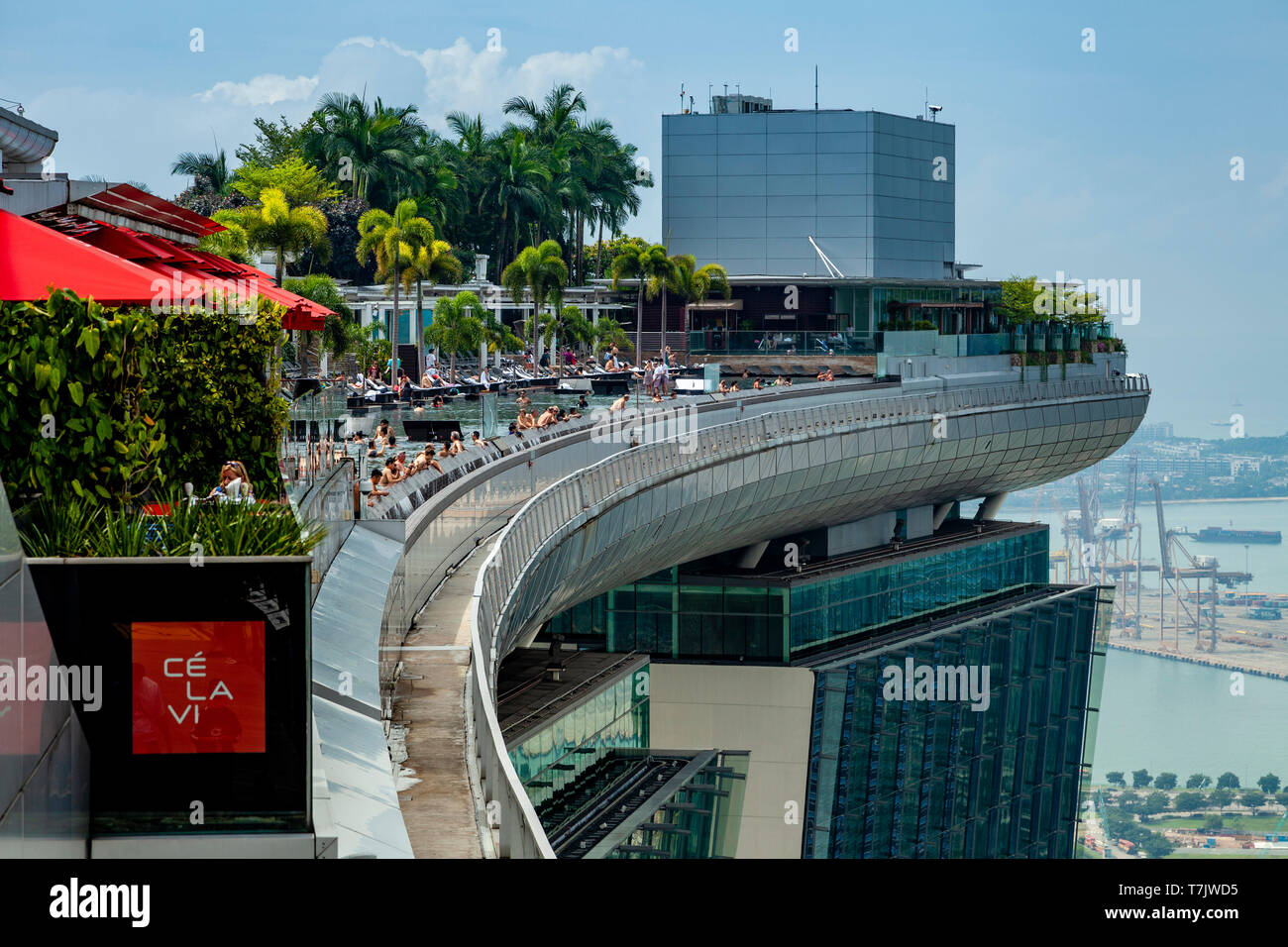 The Infinity Swimming Pool At The Marina Bay Sands Hotel, Singapore, South East Asia - Stock Image