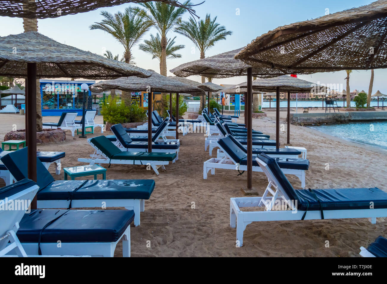 Rows Of Sunbeds And Umbrellas On A Beach In The City Of