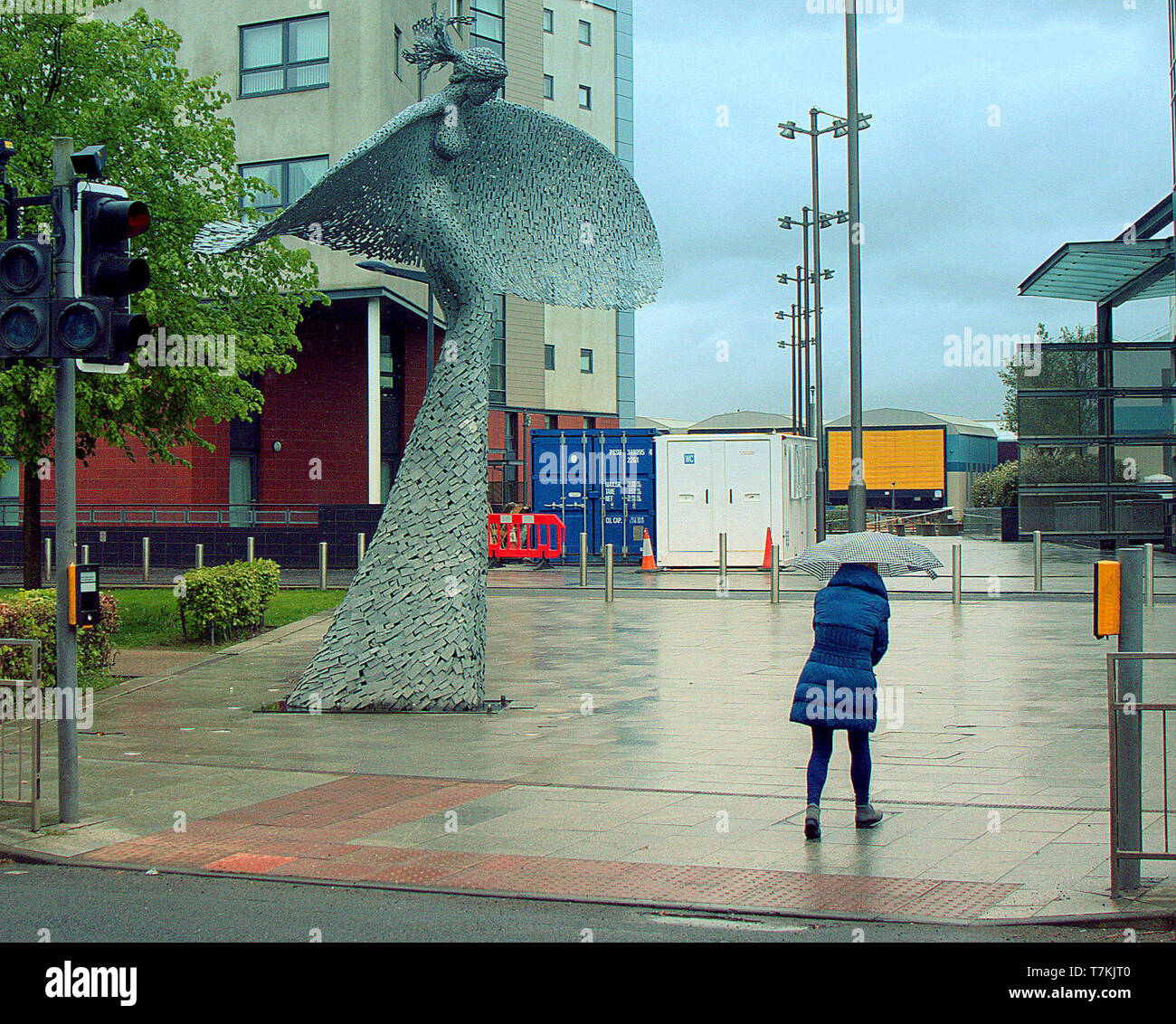 Glasgow, Scotland, UK, 8th May, 2019, UK Weather. Rain and cold in the city on a  dull day In front of the statue 'rise' a six-metre high sculpture featuring the head and body of a woman a stunning sight at Glasgow Harbour. . Credit Gerard Ferry/Alamy Live News - Stock Image