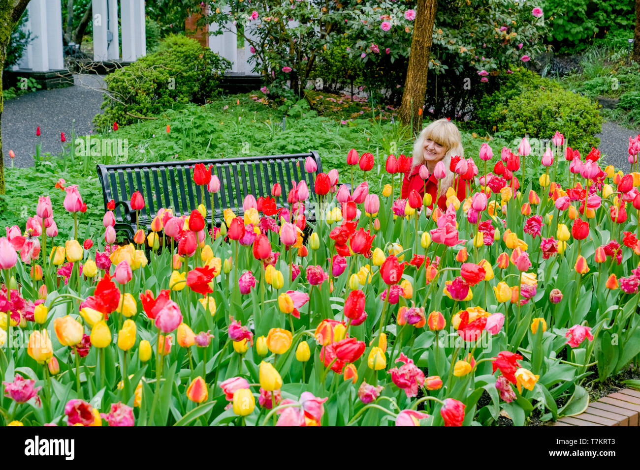 Park and Tilford Gardens, North Vancouver, British Columbia, Canada - Stock Image