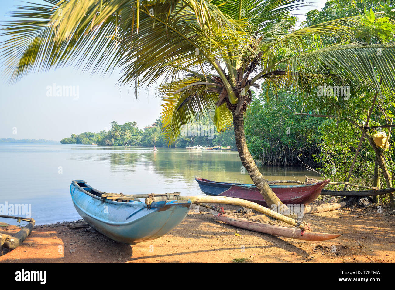 fishing boats on the lake in the jungles of Sri Lanka Stock Photo