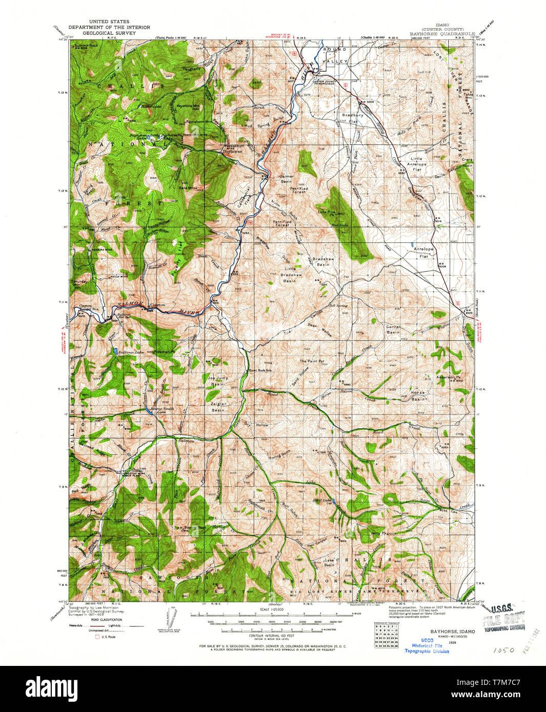 USGS TOPO Map Idaho ID Bayhorse 239444 1929 125000 ...