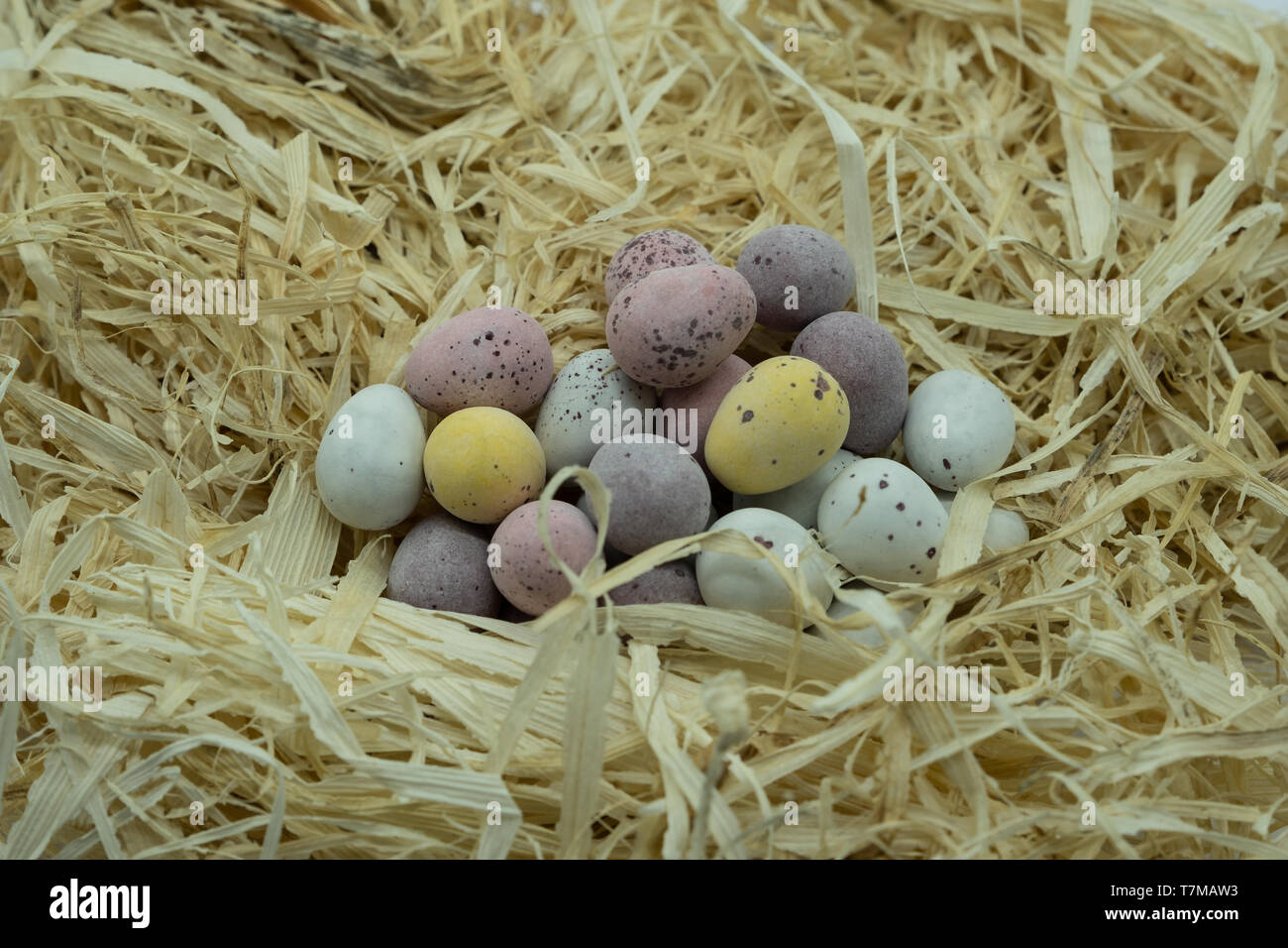 A pile of colourful chocolate eggs on a bed of fresh straw ready for Easter Stock Photo