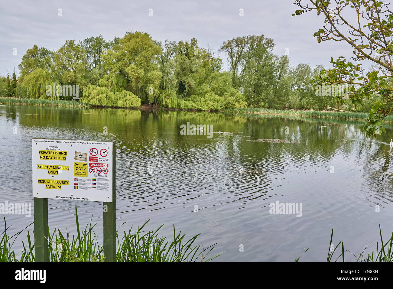 Warning that fishing in the lake is private with no day tickets and for members only at Wickstead park, Kettering, England. - Stock Image