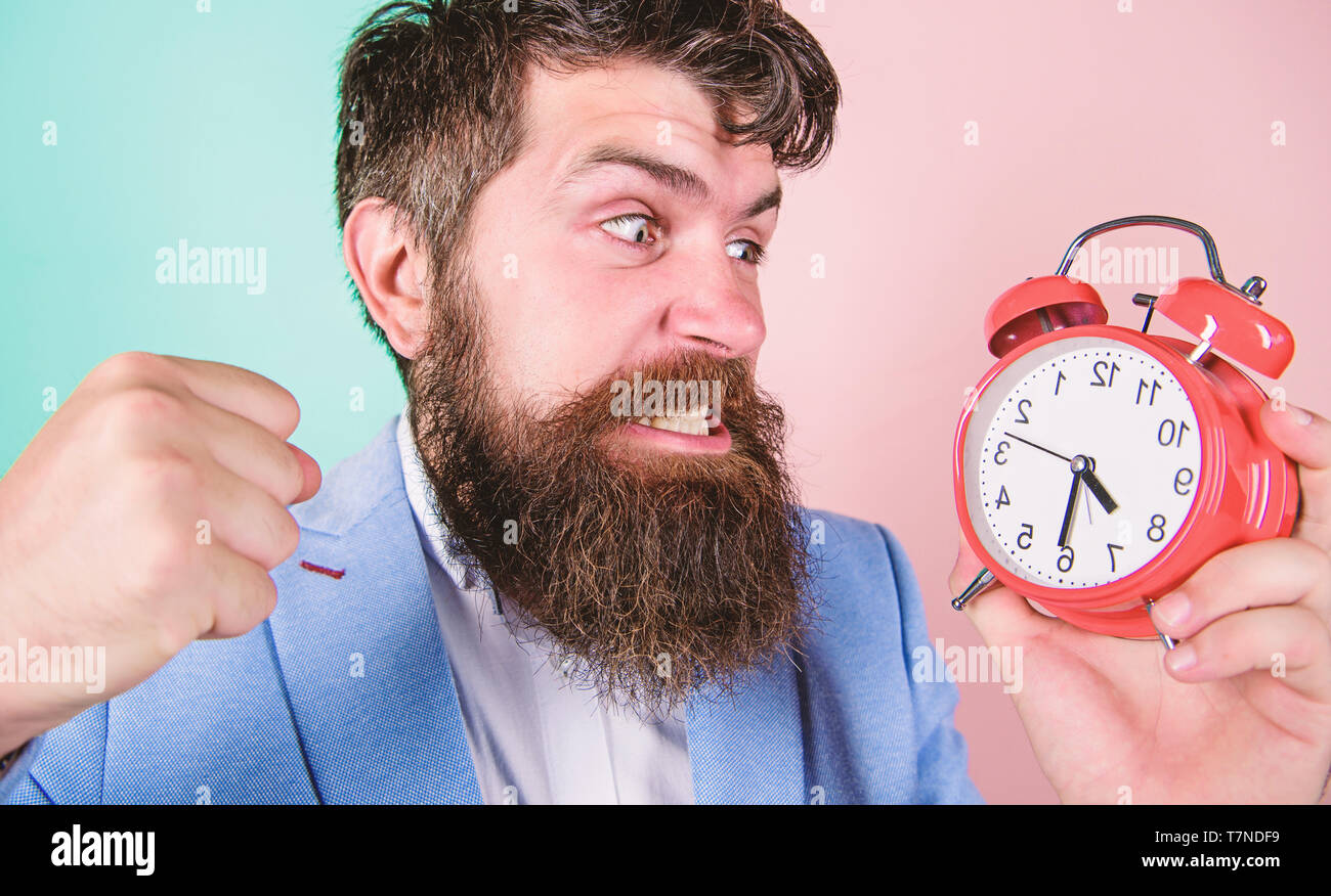 Time to work. Man bearded aggressive businessman hold clock. Stress concept. Hipster stressful working schedule. Businessman has lack of time. Time management skills. How much time till deadline. - Stock Image