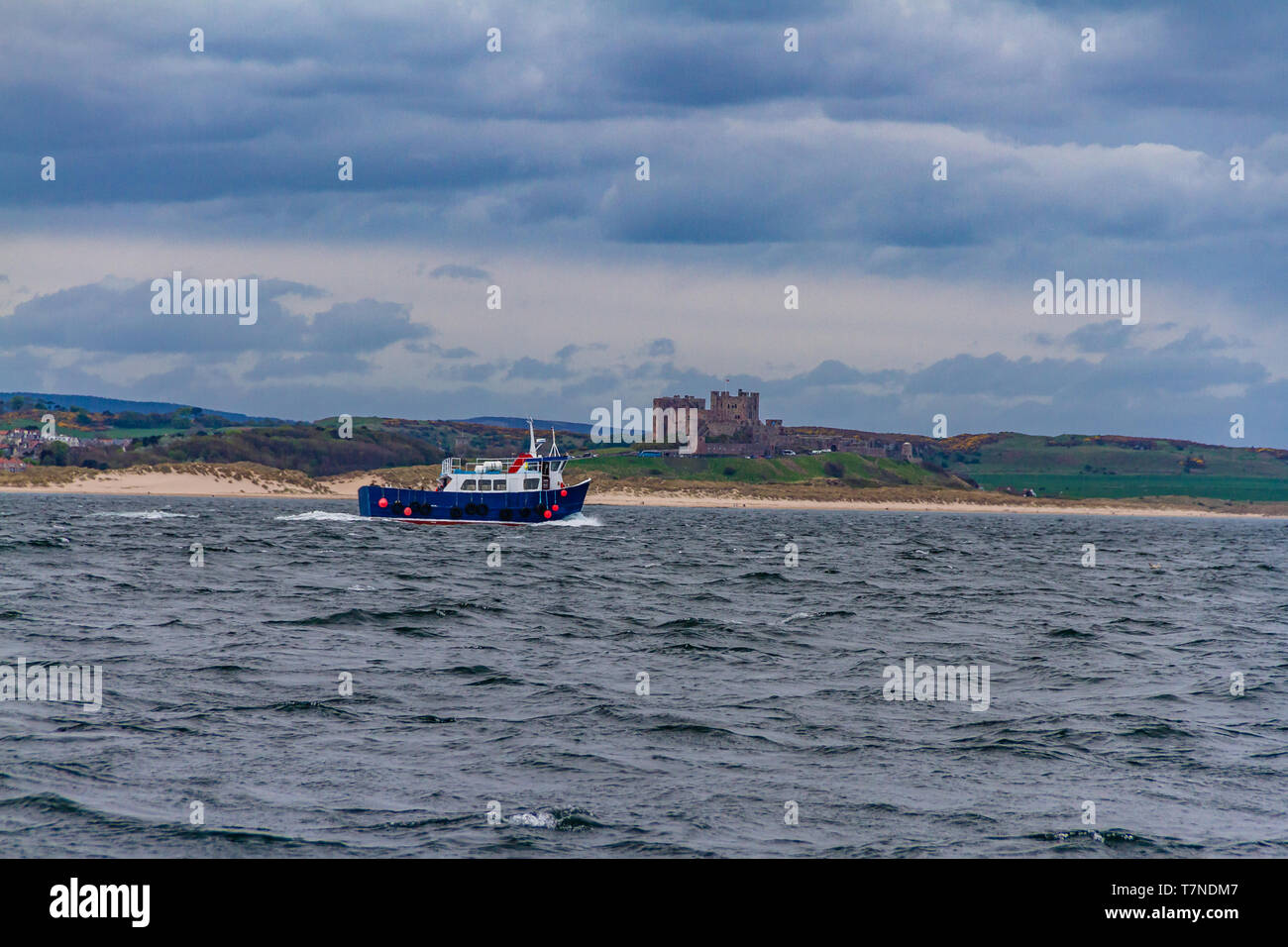Bamburgh Castle and former fishing boat taking tourists from Seahouses to the Farne Islands to look for birds and seals, Northumberland, UK. May 2018. Stock Photo