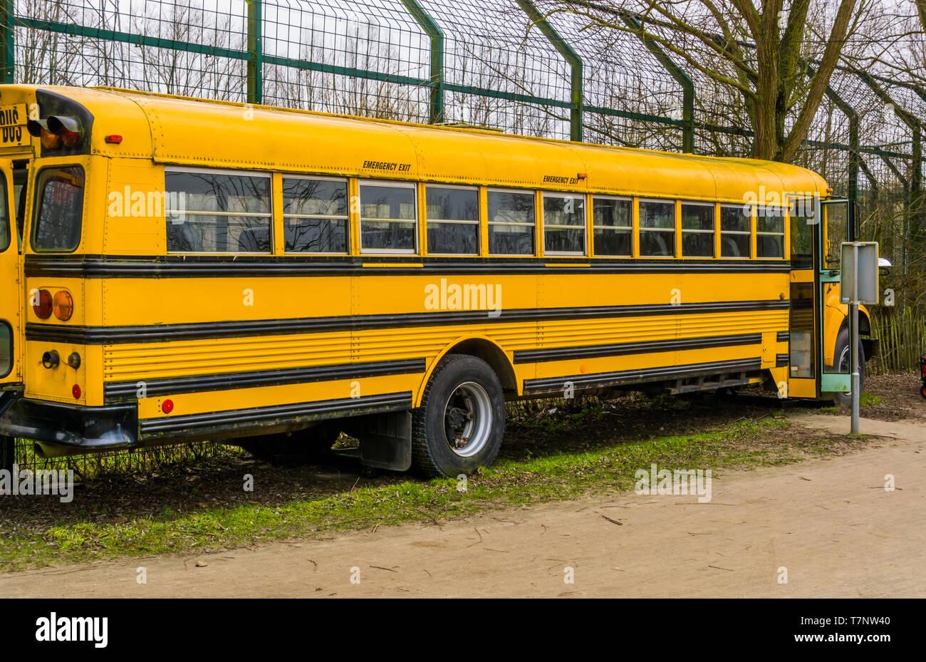 yellow old vintage school bus, Retro vehicles