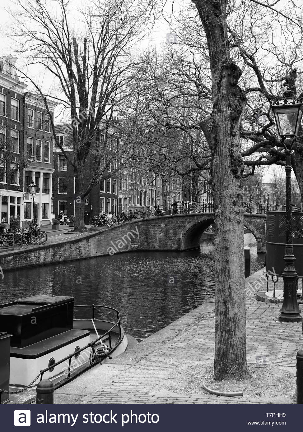 d68f0ee0b Bare trees along canal black and white, Amsterdam, Holland Stock ...