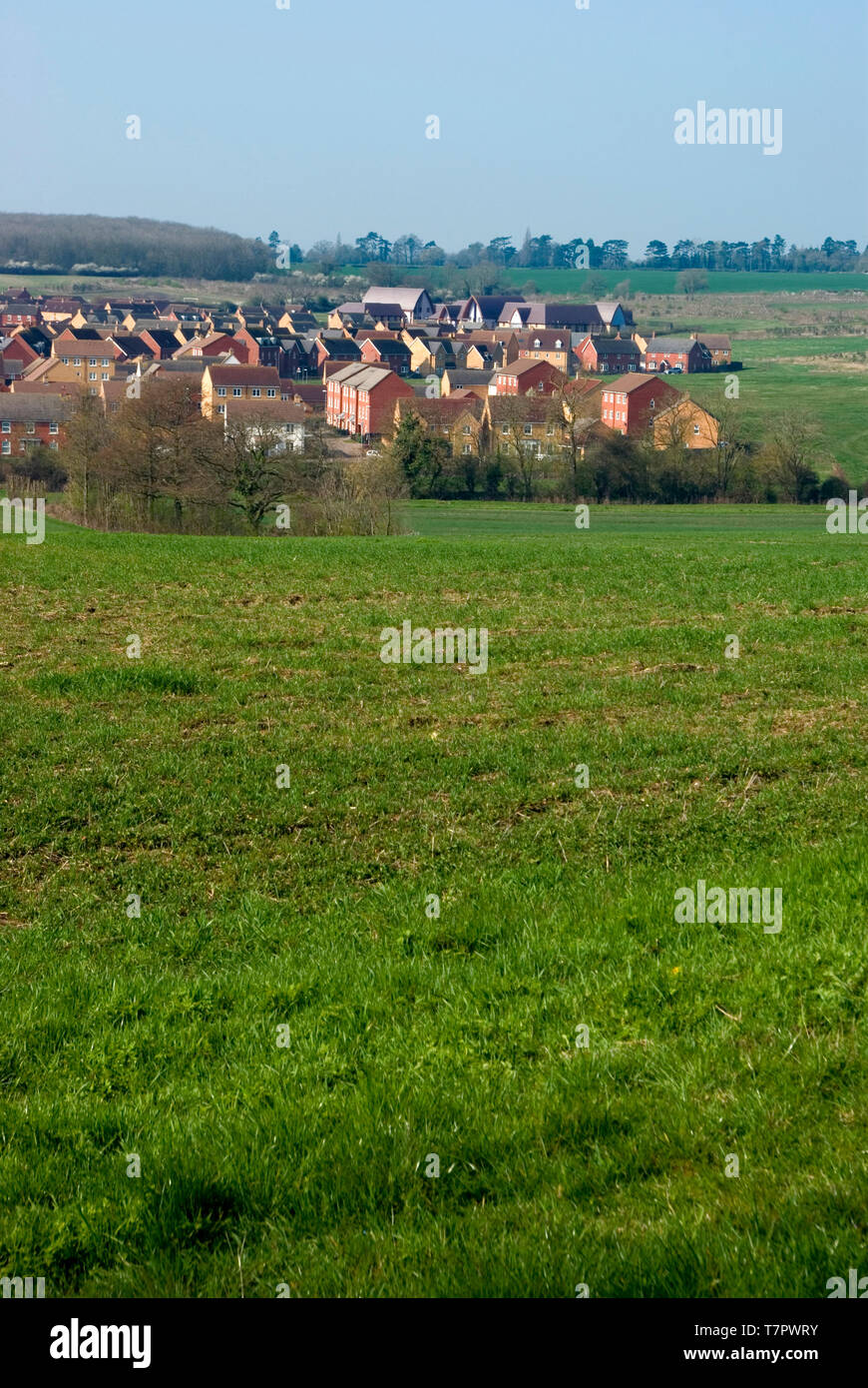 Housing on Greenfield site - Stock Image