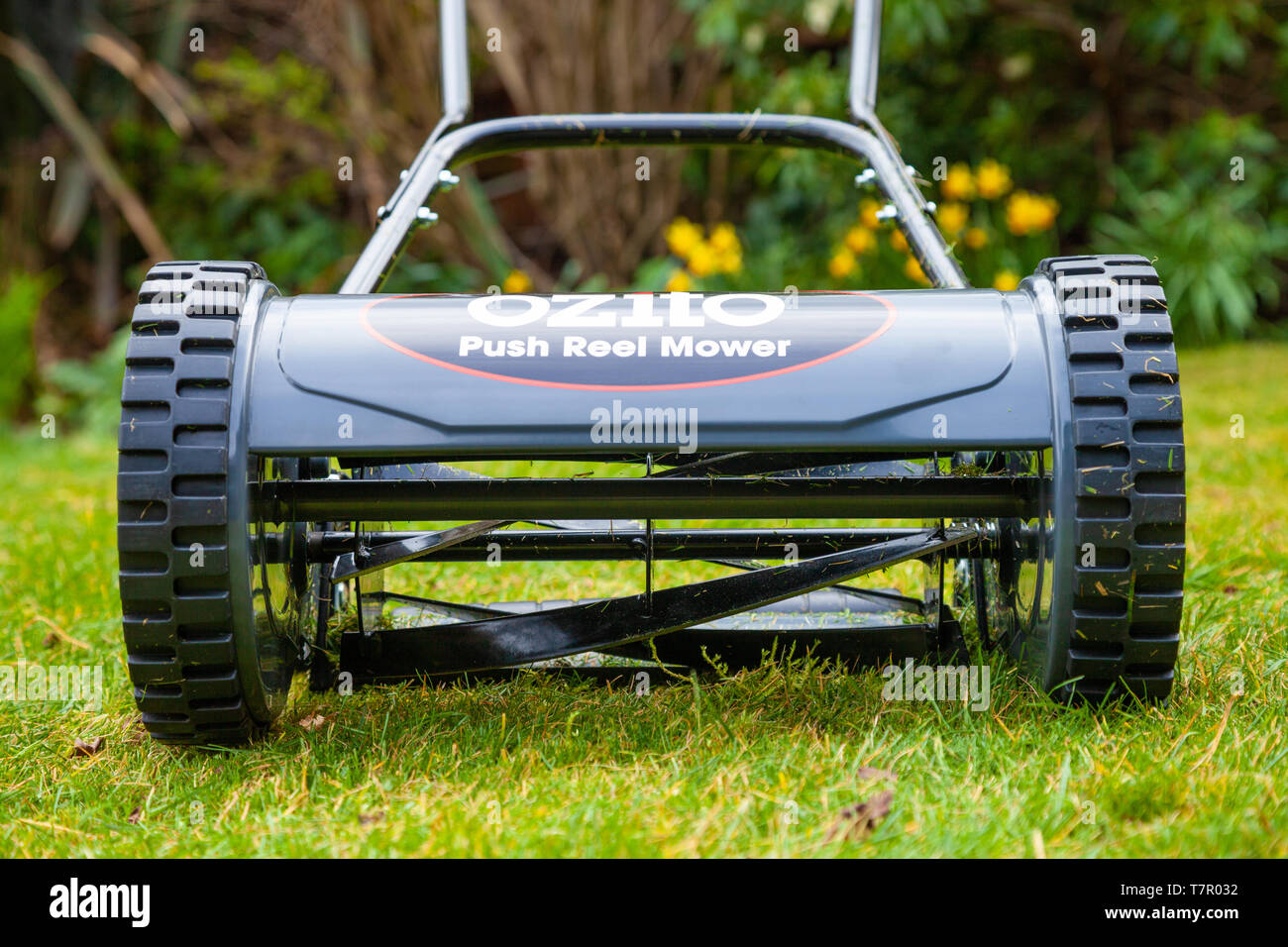A push lawn mower photographed in a domestic garden on grass. - Stock Image