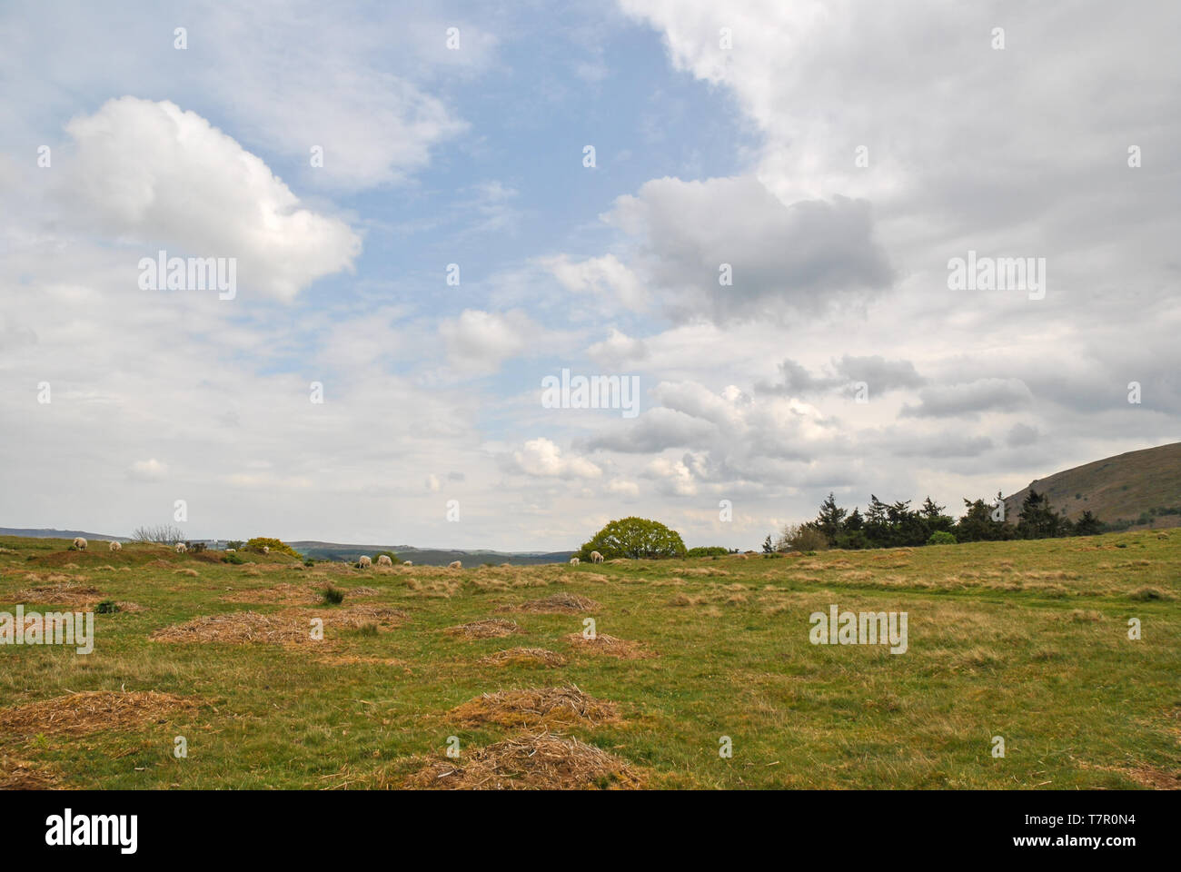 A landscpae photo showing contrasting clouds and blue sky - Stock Image