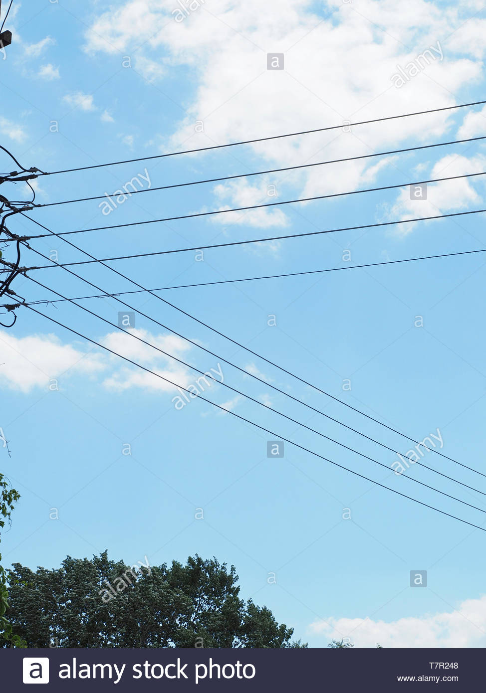 A grids view ,electric current cables - Stock Image