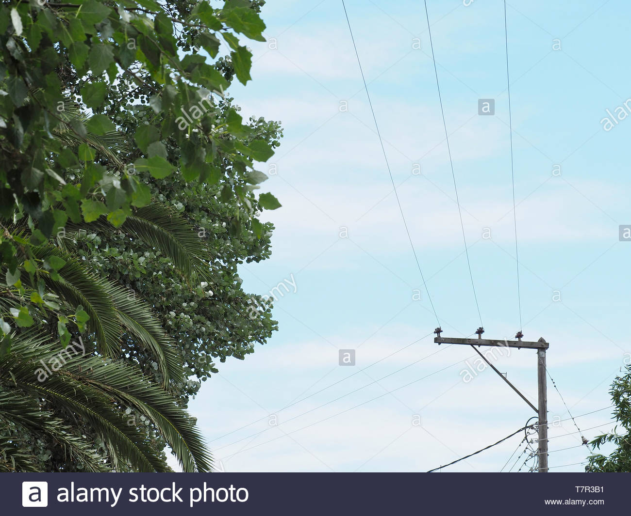 A grid view ,electric current cables Stock Photo