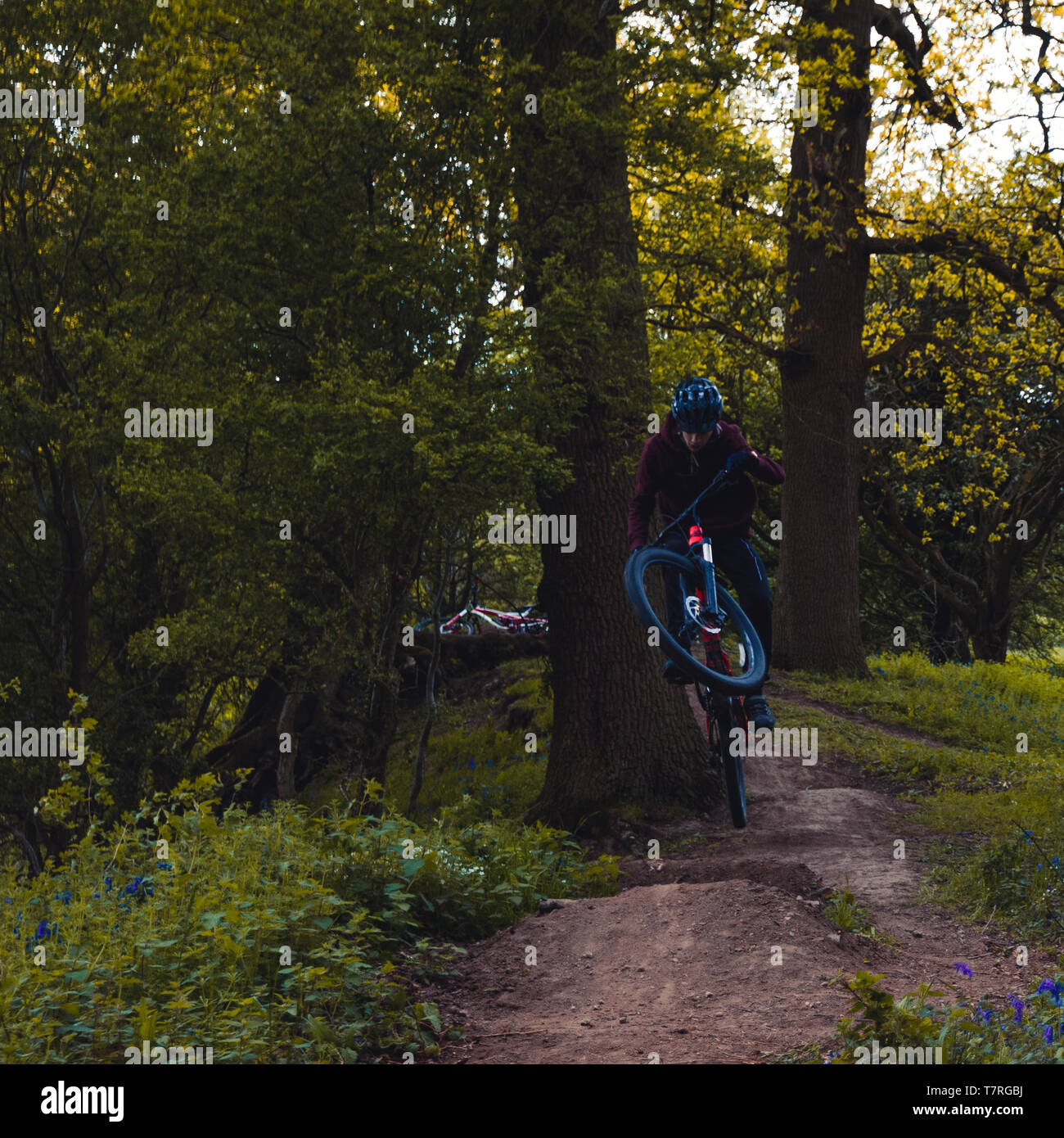 Trail jumps - Stock Image
