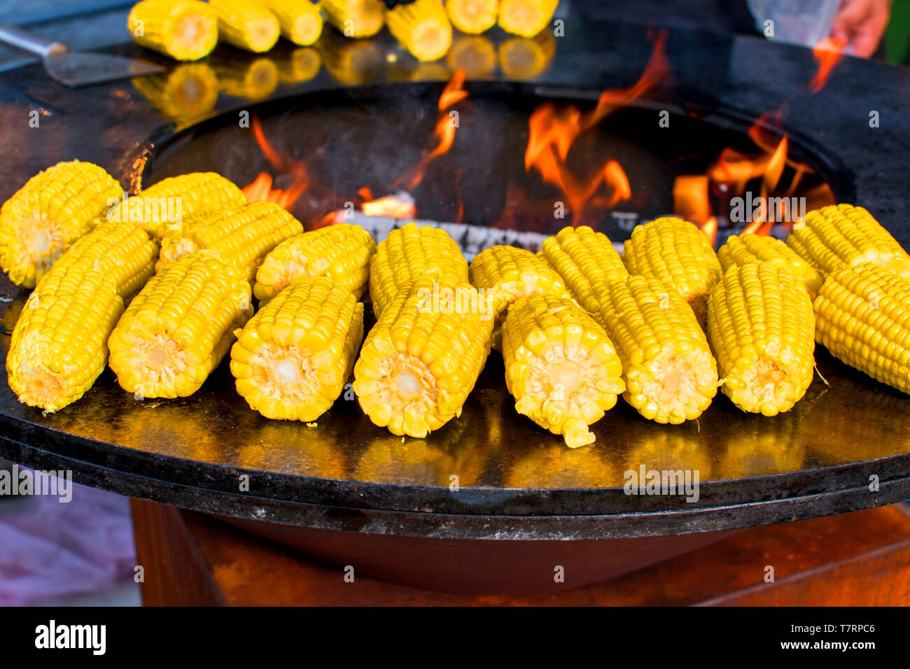 Corn on the cob on the fire ring grilled with open fire deliciously crispy - Stock Image