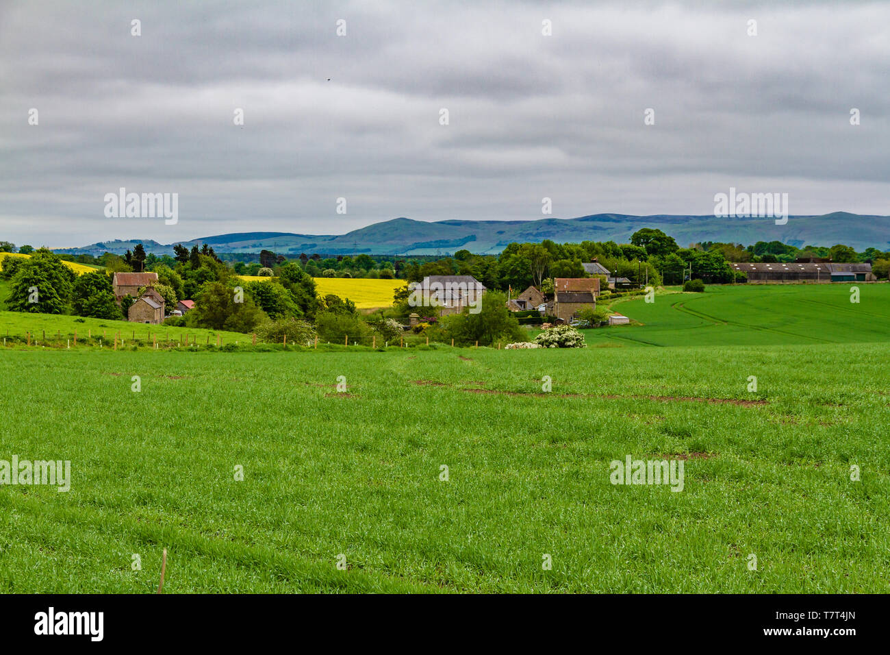 Arable farmland and buildings near Heatherslaw on the Ford and Etal Estates, Northumberland, UK. May 2018. Stock Photo