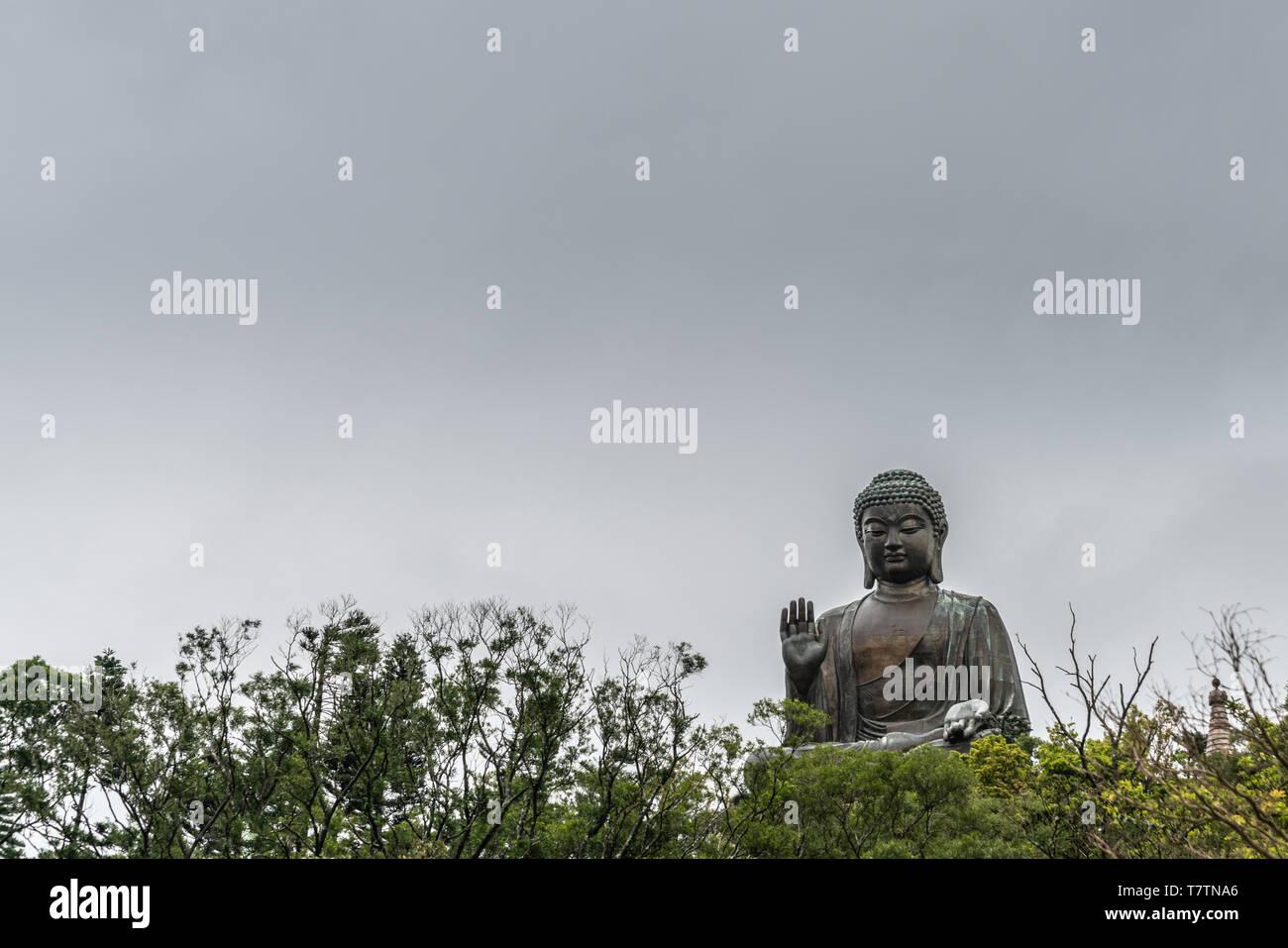 Hong Kong, China - March 7, 2019: Lantau Island. Frontal view, Tian Tan Buddha peeps over trees, statue from down under farther away under rain promis - Stock Image