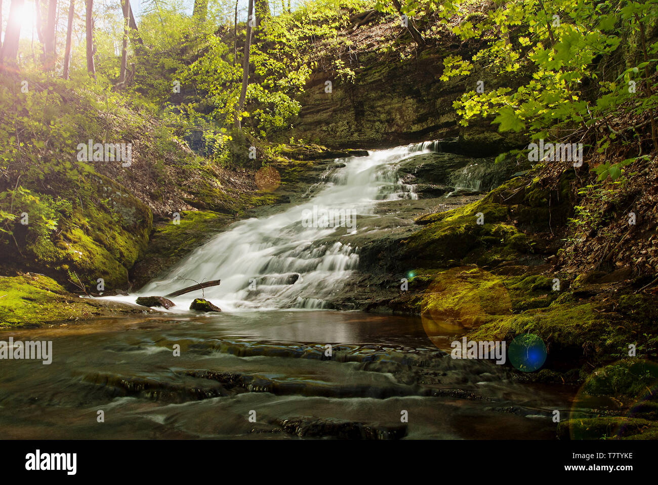 Cascade in the Park - Stock Image