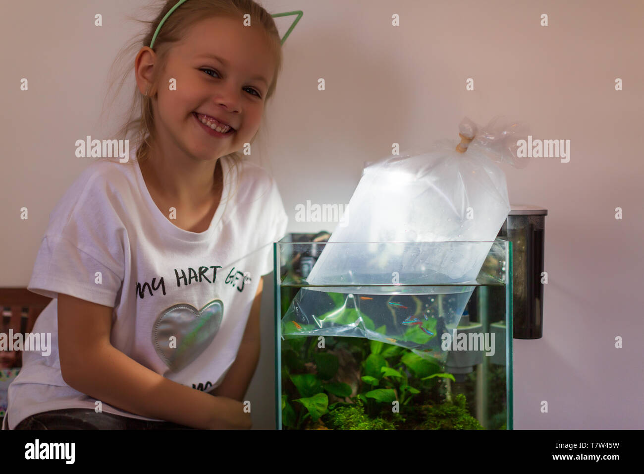 girl holding a plastic bag with a new fish they got in a zoo store ready to put it into a home aquarium - Stock Image