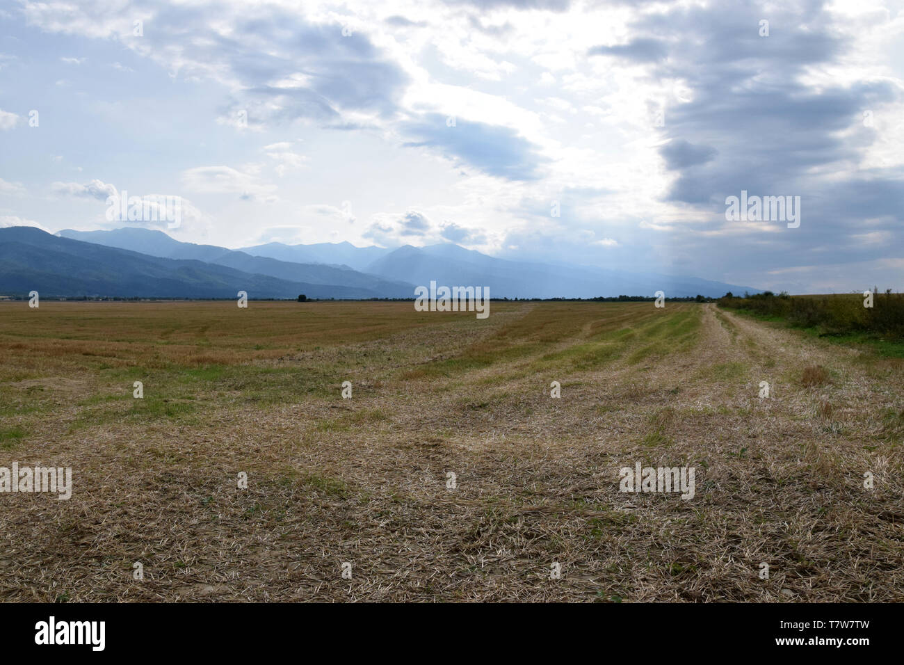 View of the Fagaras mountains from north side. Romania. Stock Photo