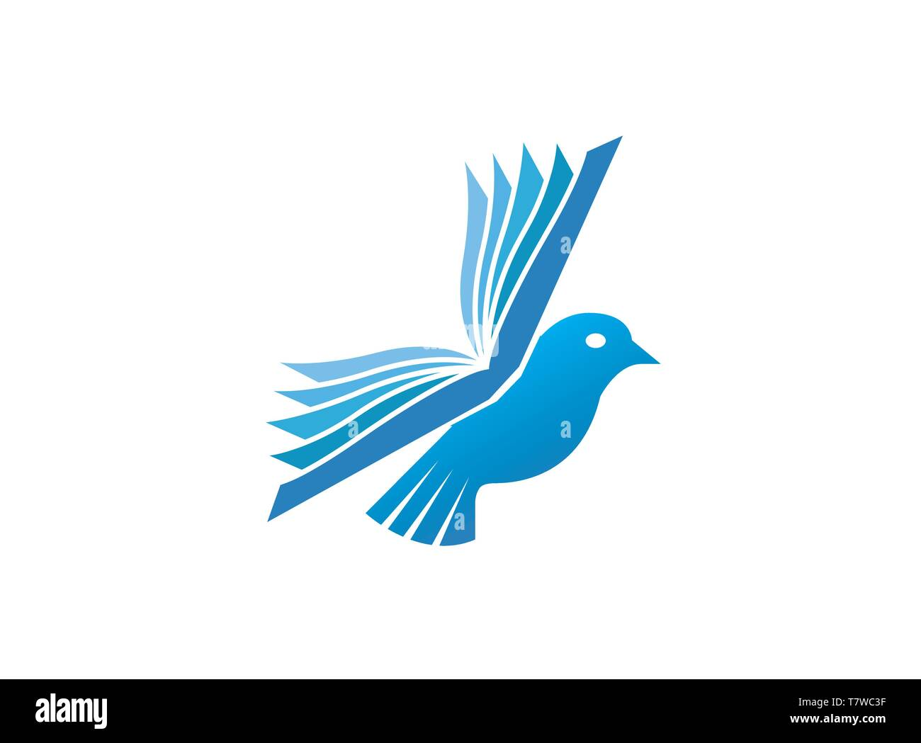 Dove bird fly with wings book for logo design illustration, education icon, read and learn symbol - Stock Vector