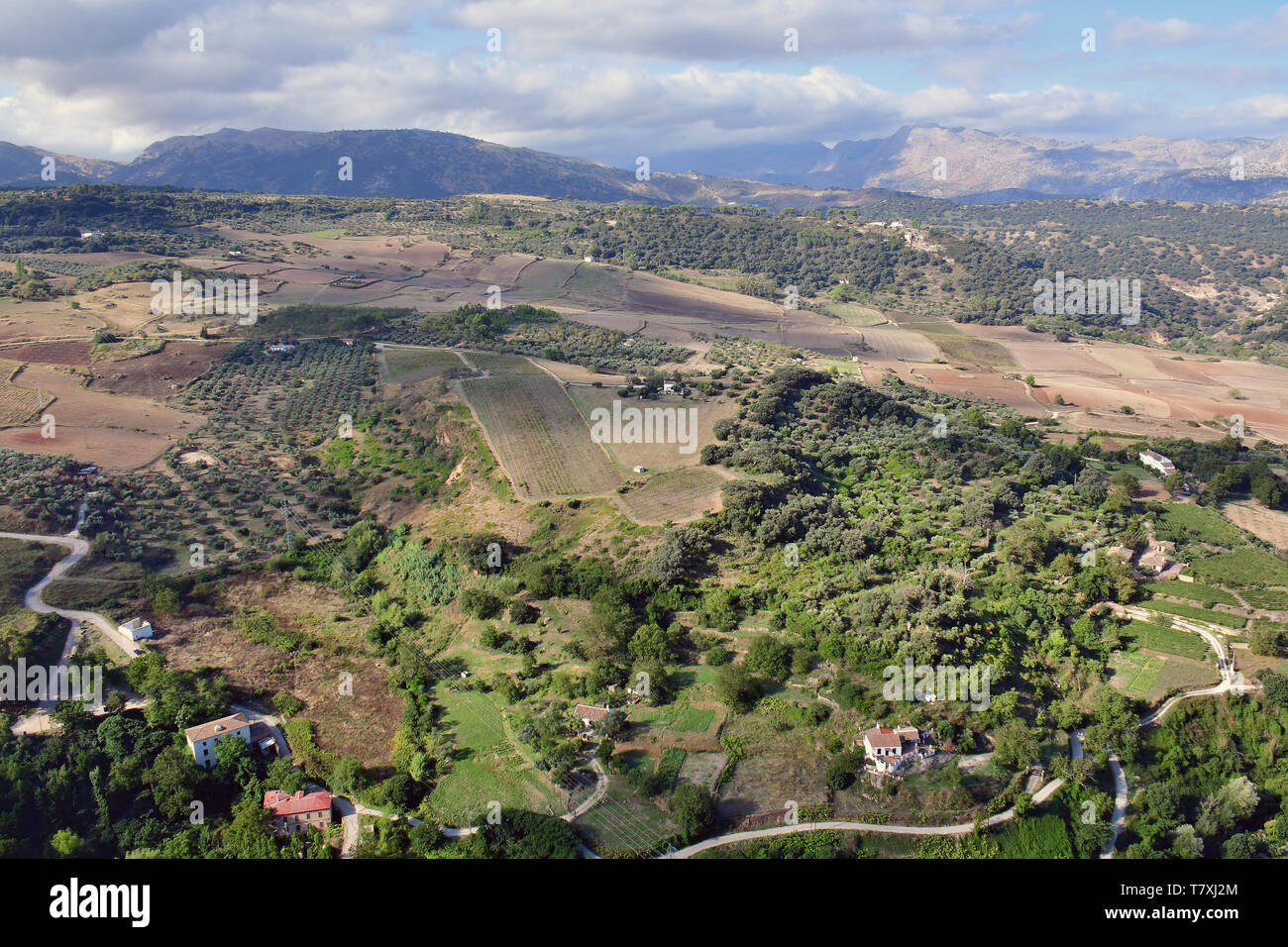 Landscape, Ronda, Andalucía, Andalusia, Spain - Stock Image